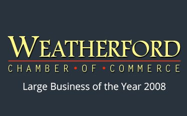 Large Business of the Year 2008